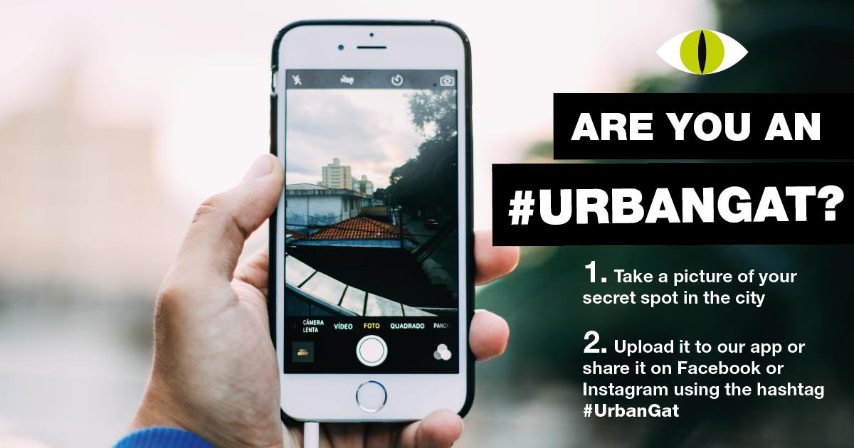 UrbanGat-08